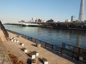 Sumida Park - 2